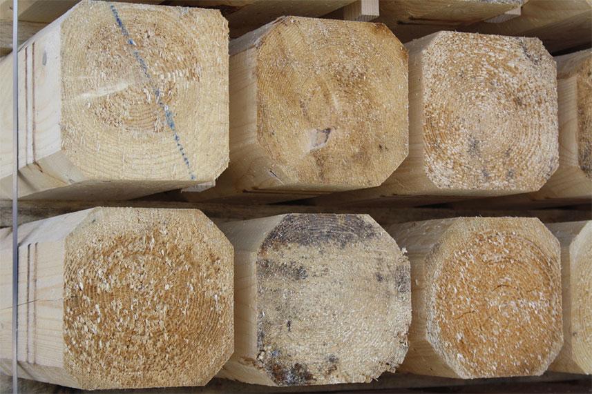 legno-massello